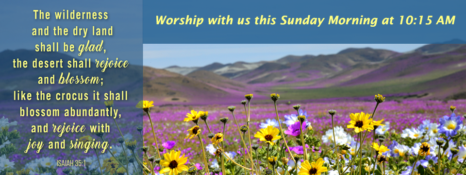 Worship with us this sunday